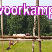 Kamp 2016 - Kapoenen en Welpen